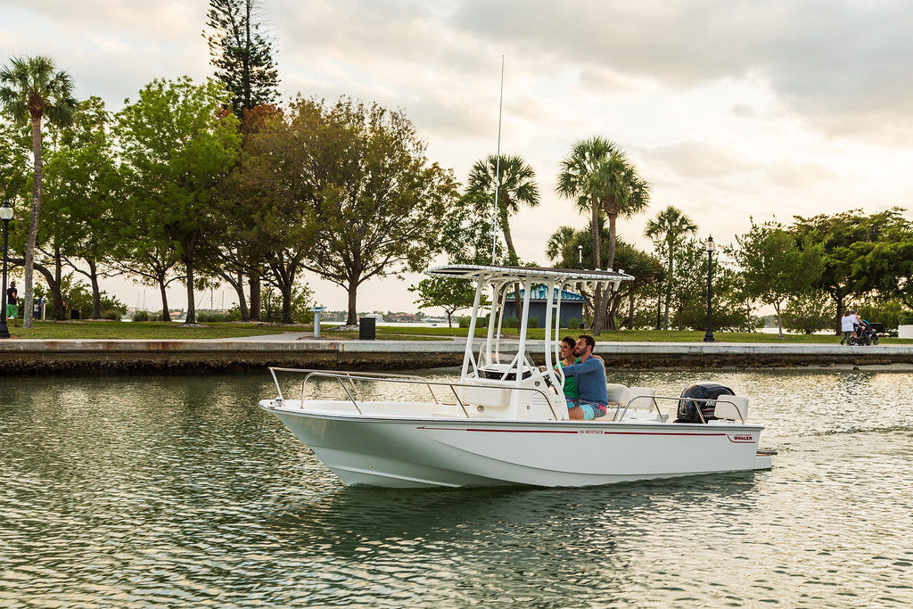 2021 Boston Whaler boat for sale, model of the boat is 190 Montauk & Image # 1 of 1