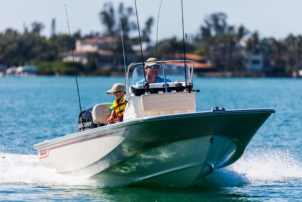 2021 BOSTON WHALER 150 MONTAUK for sale