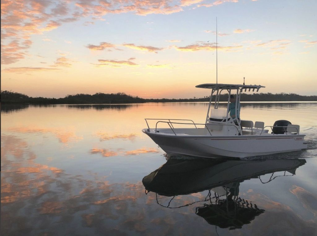 2020 Boston Whaler boat for sale, model of the boat is 190 Montauk & Image # 1 of 1