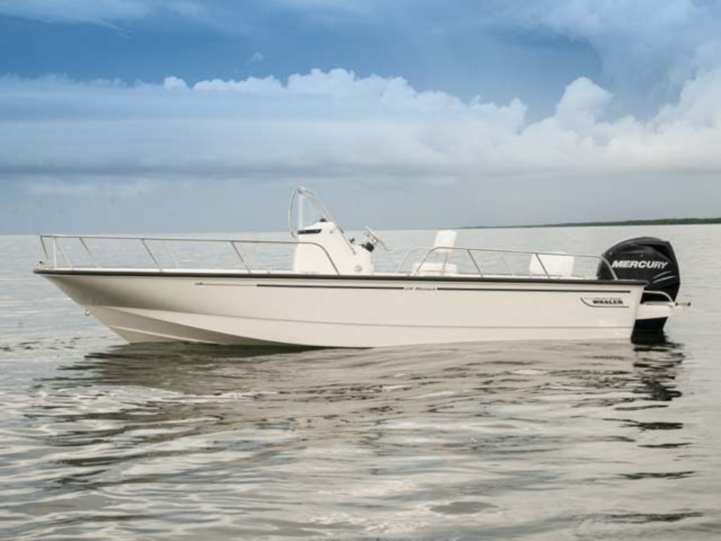 2015 Boston Whaler boat for sale, model of the boat is 210 Montauk & Image # 1 of 1