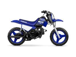 Picture of A 2019 Yamaha PW50