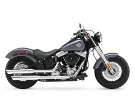 2015 Harley-Davidson FLS - Softail Slim for sale 72711