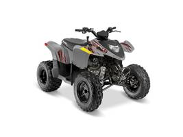 New  2018 Polaris® Phoenix® 200 ATV in Roseland, Louisiana