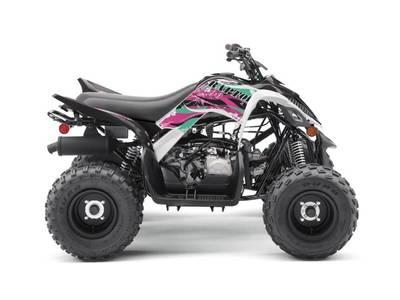 2019 Yamaha Raptor 90 for sale 223642