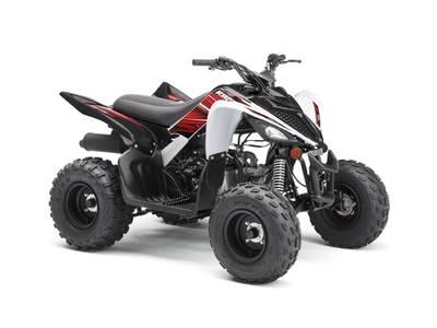 2019 Yamaha Raptor 90 for sale 254799