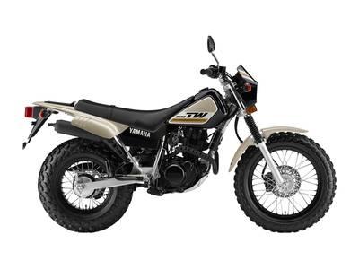 2019 Yamaha TW200E   1 of 1
