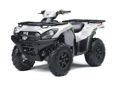 2019 Kawasaki Brute Force 750 4x4i EPS for sale 66335