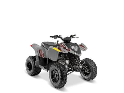 2019 Polaris PHENIX 200