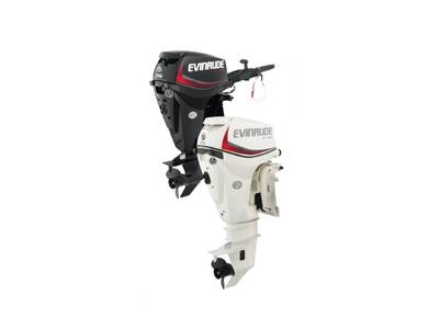 2019 Evinrude boat for sale, model of the boat is E25DRGL & Image # 1 of 1
