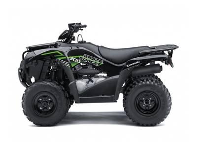 2020 Kawasaki Brute Force 300 | 1 of 2