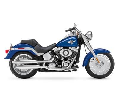2015 Harley DavidsonR FLSTF