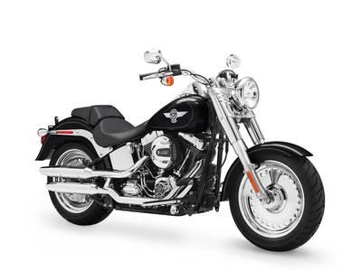 2017 Harley DavidsonR FLSTF