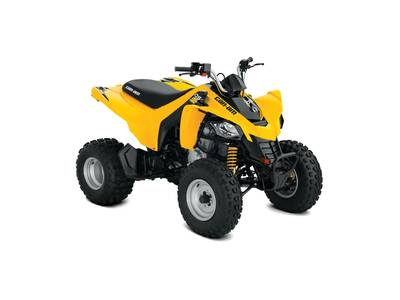 2018 Can-Am DS 250 for sale 101307