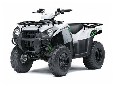 2018 Kawasaki Brute Force® 300 | 2 of 2