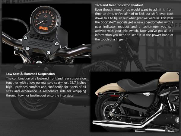 2014 Harley-Davidson® Sportster® Iron 883™   Roughrider Harley-Davidson®