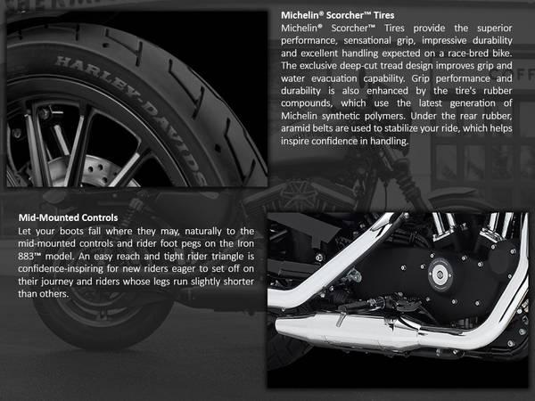 2014 Harley-Davidson® Sportster® Iron 883™   Harley-Davidson