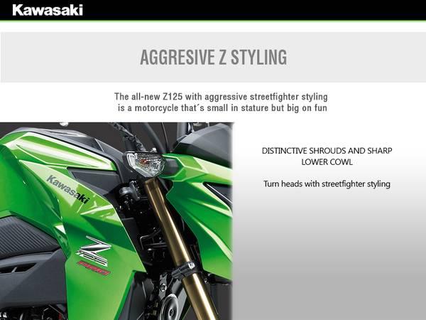 2017 Kawasaki Z125 PRO | McGrath Powersports