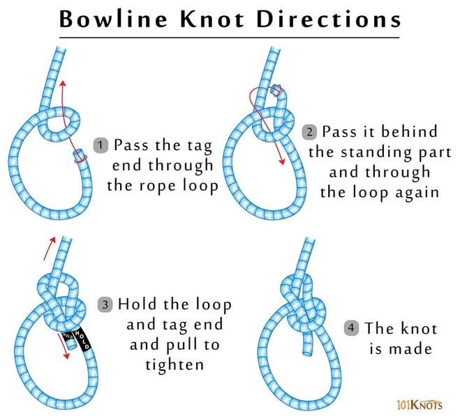 hot to tie a bowline knot