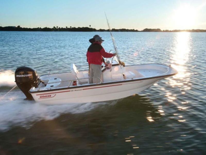 Miami swinging boaters
