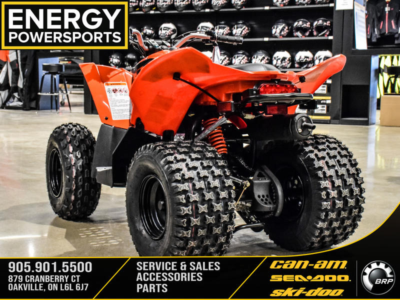 2019 Can-Am ATV DS 90™ | 3 of 15