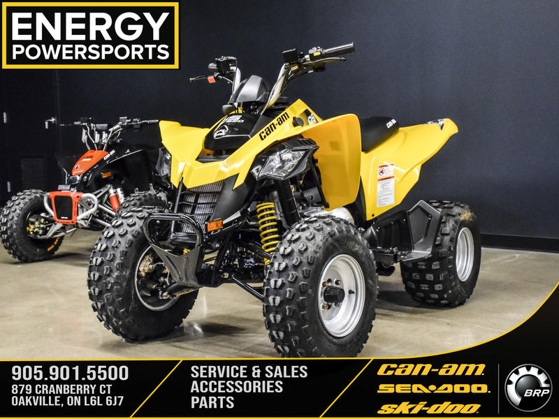 2019 Can-Am ATV DS 250®