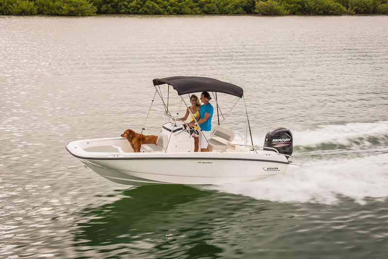 2020 Boston Whaler boat for sale, model of the boat is 170 Dauntless & Image # 1 of 1