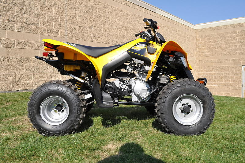 2018 Can-Am™ DS 250 6