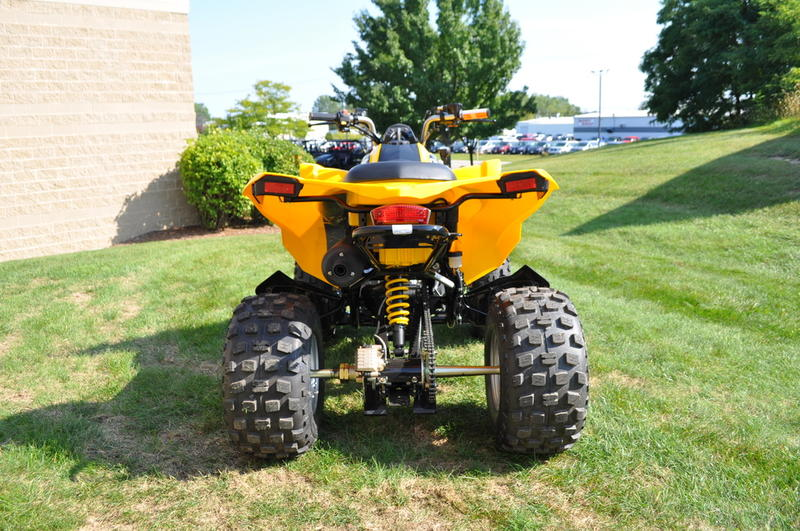 2018 Can-Am™ DS 250 4