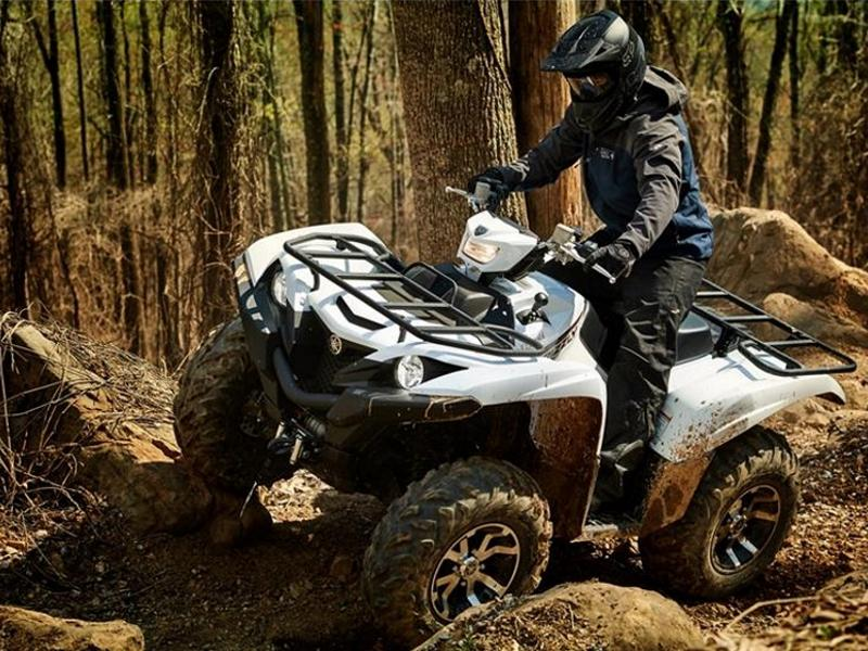 2019 Yamaha Grizzly EPS   Fun Products