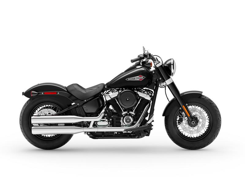 New 2019 Harley-Davidson Slim