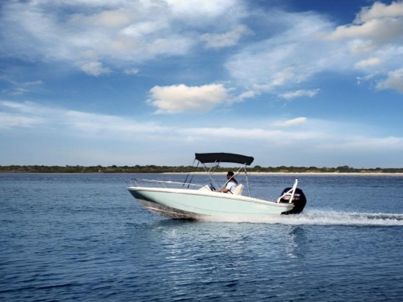 Boston whaler | New and Used Boats for Sale
