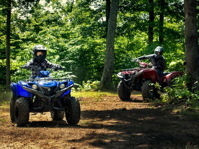Honda ATVs For Sale in Charleston & Effingham, IL