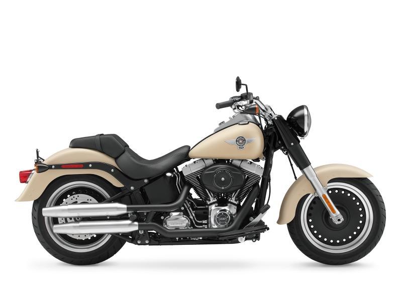 2014 Harley-Davidson® Softail® Fat Boy® Lo | Roughrider