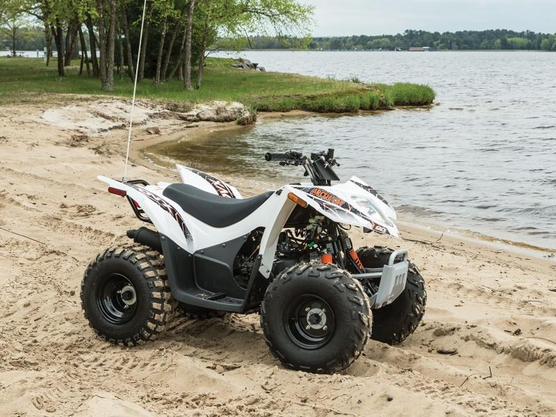used atvs for sale in salem near mount vernon effingham champaign and mattoon illinois. Black Bedroom Furniture Sets. Home Design Ideas