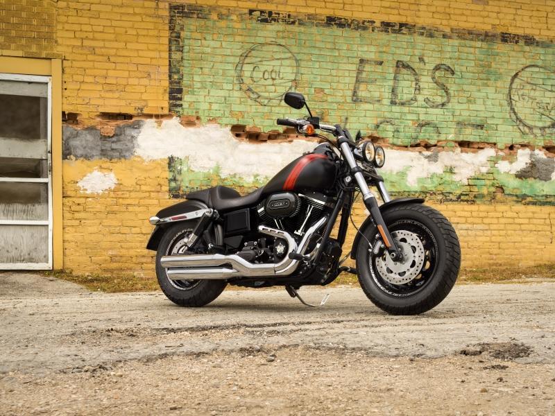 Dyna® Family   Gruene Harley-Davidson®   New Braunfels Texas