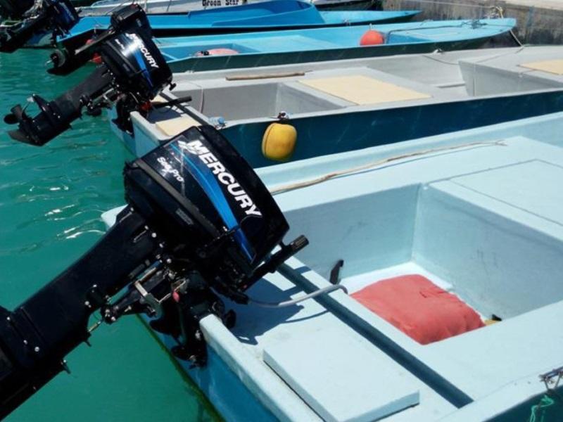 2017 Mercury Marine® 75 HP SeaPro™ TwoStroke | Metro Boating