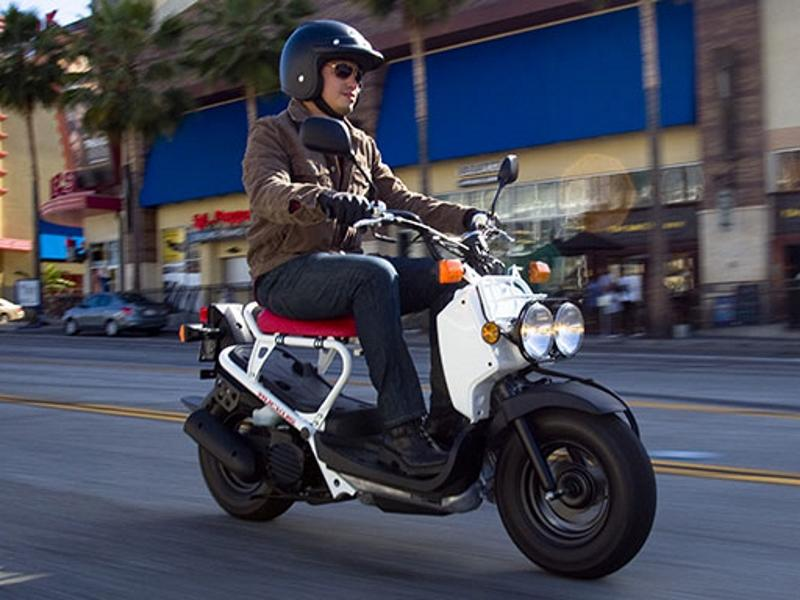 Honda Ruckus Scooter for sale in Davie near Fort Lauderdale