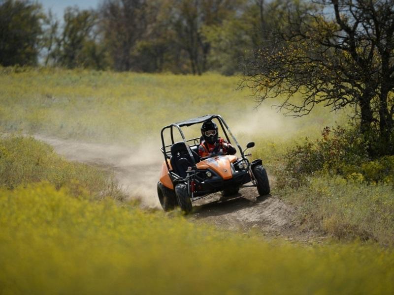 Hammerhead Go Karts For Sale | Lake Wales, FL | Powersports Dealer